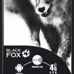 Fél tucat kis fekete róka