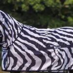 Why do scientists put a zebra suit on a regular horse? In the name of science!