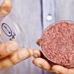 Production of artificial meat will not benefit the environment.