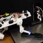 The robot learned to walk from scratch in just 5 minutes and developed an individual walk.