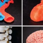Found a way to keep cells alive when 3D printing large organs