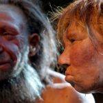 Climate change has turned some Neanderthals into cannibals.