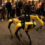 Mechanical dogs of Boston Dynamics will become members of fighting on robots