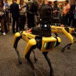 Механічні собаки Boston Dynamics стануть учасниками боїв на роботах