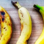 Why can bananas disappear from the face of the earth?