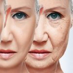 Scientists understand how the rejuvenation mechanism works. Eternal youth just around the corner?