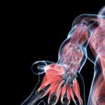 В імунній системі людини знайшли новий орган, який шукали дуже давно