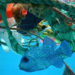 A tudósok kiszámították, hogy az emberiség mennyire szennyezi az óceánokat