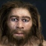 Neanderthals could disappear from a cold