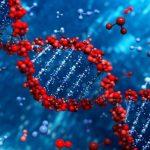 Kan vi afsløre den genetiske kode?