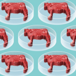 How to make artificial meat even more like the present