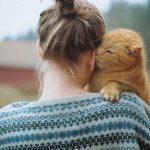 Katten zien eigenaren als hun ouders