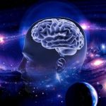 What is the Boltzmann brain?