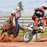 Що небезпечніше: їзда на коні або на мотоциклі?