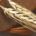 Шведські вчені виявили, що жито допомагає позбавитися від зайвої ваги